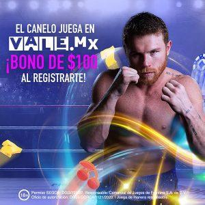 Kasino Canelo Vale MX