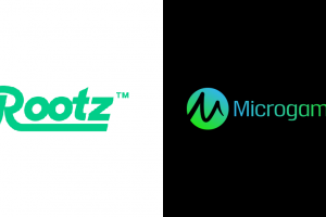 Microgaming y Rootz Limited